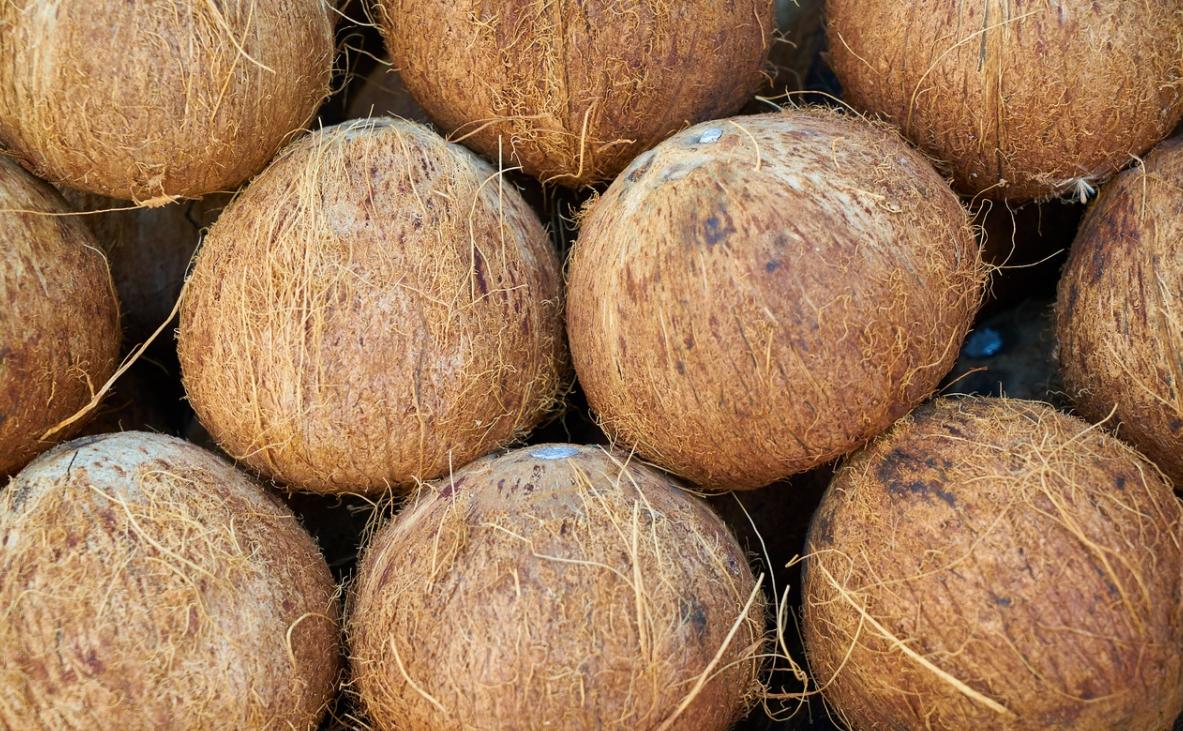 chutný kokos