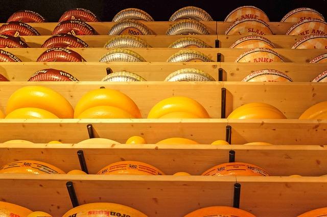 zrající kola sýrů