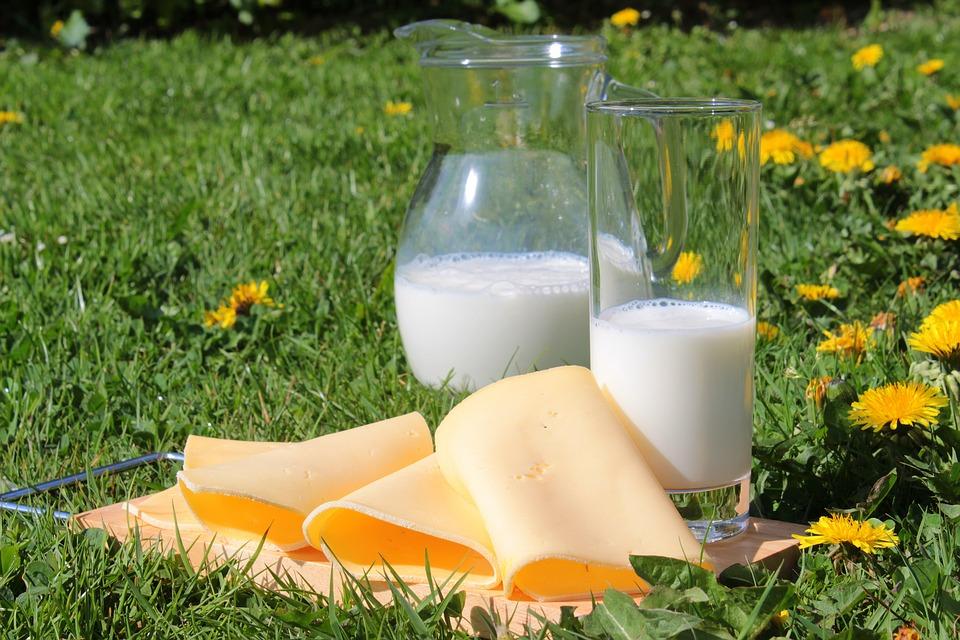 plátek sýra